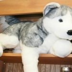 """Buy BARKER plush 30"""" LARGE HUSKY stuffed animal DOG Douglas Cuddle"""