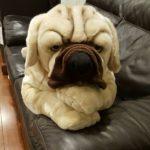 "Buy Giant Big Plush Stuffed Dog Toy Pillow 45""(112cm)"