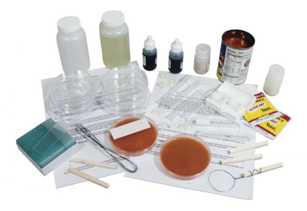 Buy Microbiology Culture Kit