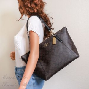 Buy NWT Coach F58318 Ava Signature Tote Handbag in Brown Black