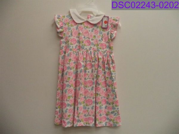 Buy NWT Nantucket Kids Girl's Size 5 Short Sleeve Pink Floral Dress English Garden