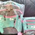 Buy Pottery Barn SET Large Backpack + Lunch bag Tech school girl sport aqua pink NEW