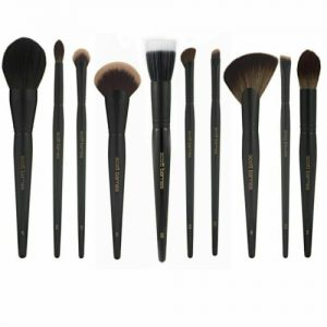Buy Scott Barnes Pro Series Brush Collection - (Please Select Brushes) New/SDS