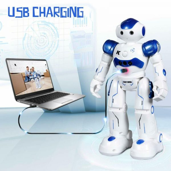 Buy Sgile Rc Robot Toy, Programmable Intelligent Walk Sing Dance Robot For Kids Gift